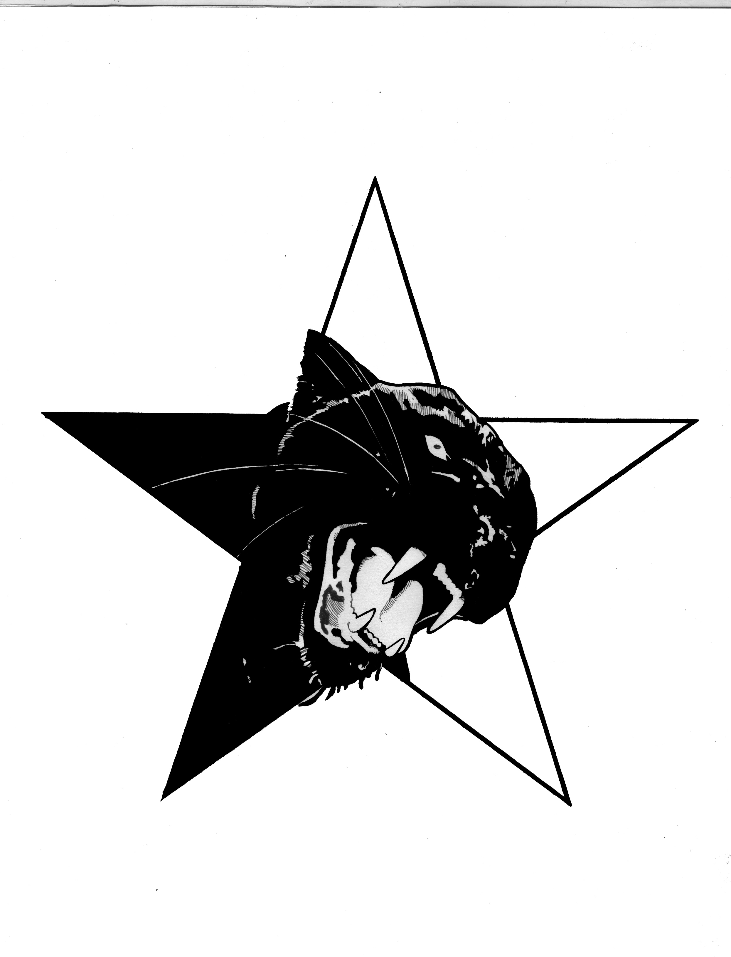 Black Panther Red Star