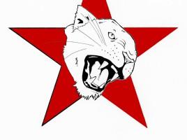 whitepantherorganization_red
